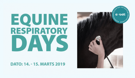 Equine respiratory days
