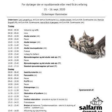 Program for akutkursus smådyr for nyuddannede dyrlæger