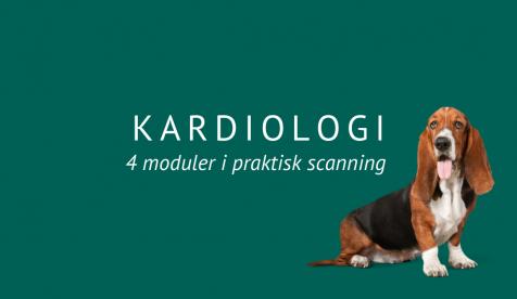 Kardiologi | 4 Moduler i praktisk scanning